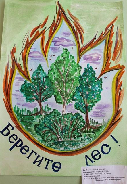 выпускаются береги лес постеры принятые