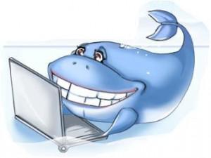 """21 октября заканчивается прием заявок на участие во Всероссийском конкурсе КИТ """"Компьютеры, информатика, технологии"""""""""""